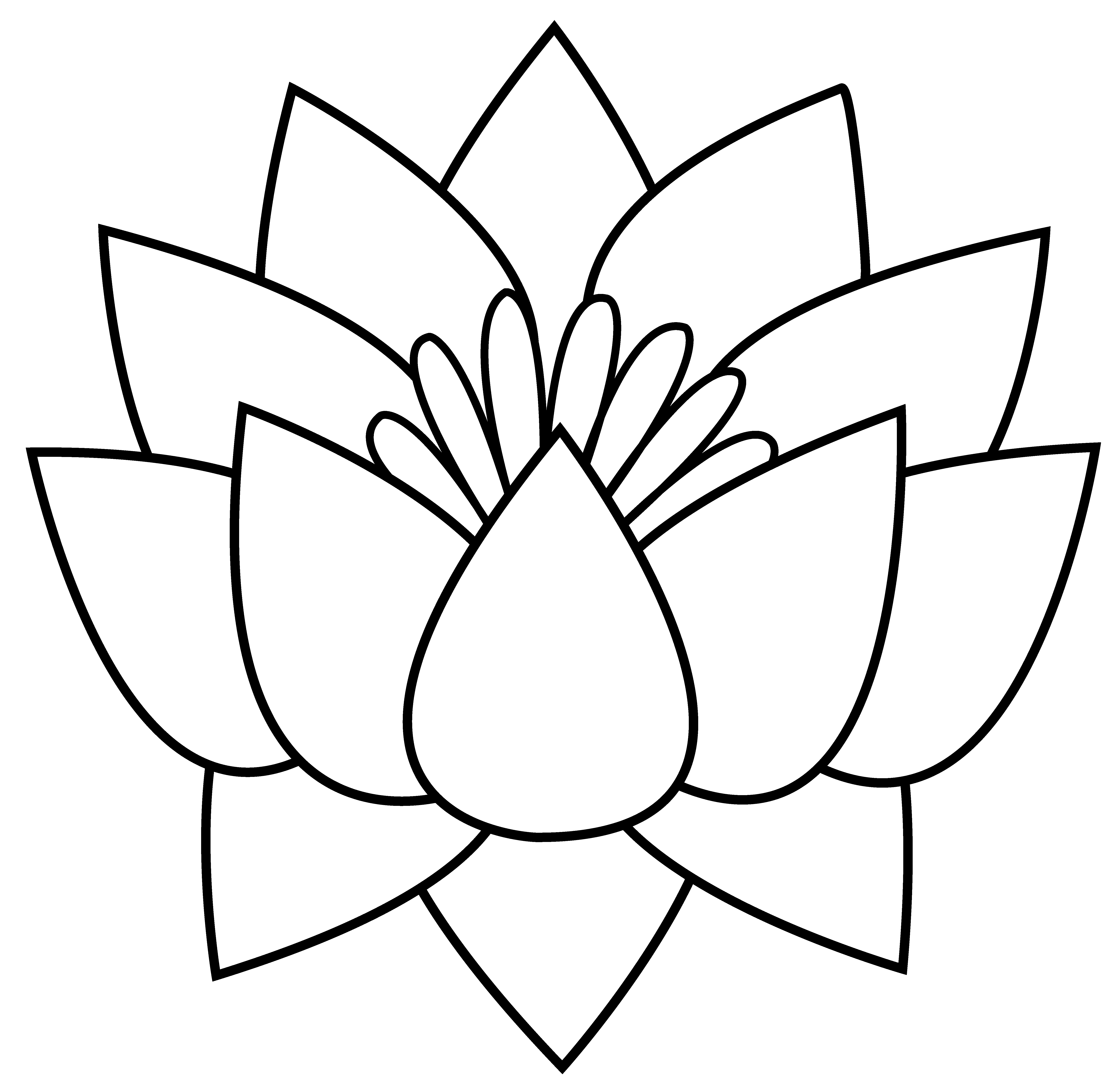 Bee White Lotus Flower Clipart Clipground