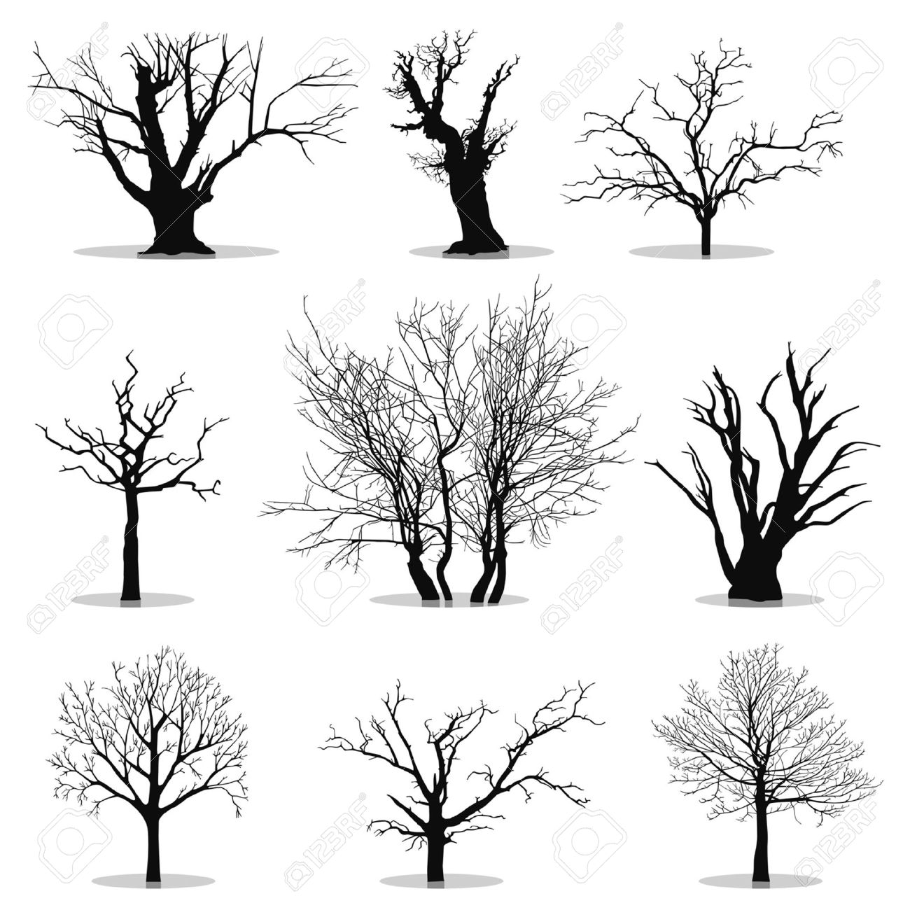 Collection Of Trees Silhouettes Royalty Free Cliparts, Vectors.