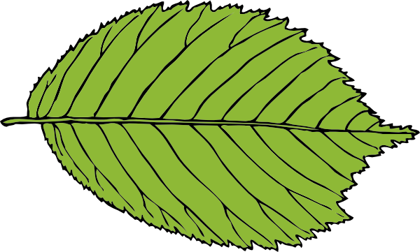 Apple leaves clipart.