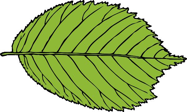 Apple leaves clipart.