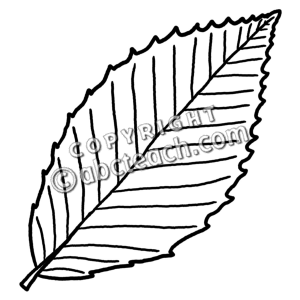 Similiar Beech Leaf Clip Art Keywords.