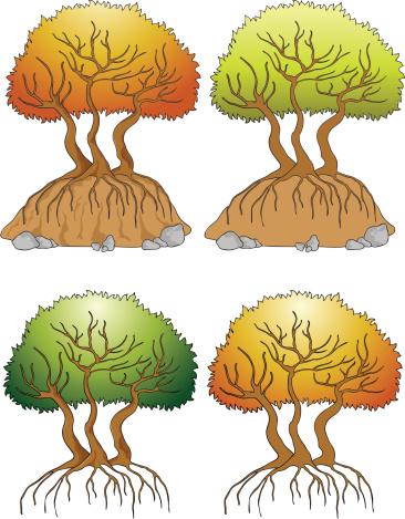 Beechnut Clip Art, Vector Images & Illustrations.
