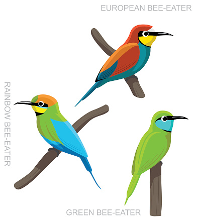 Little Bee Eater Clip Art, Vector Images & Illustrations.