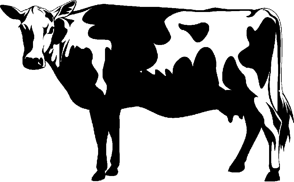 Show Cattle Clipart.