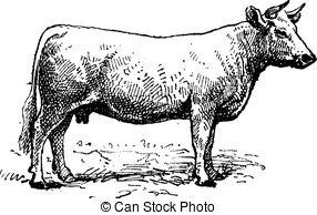 Cattle breeding Clipart Vector Graphics. 621 Cattle breeding EPS.