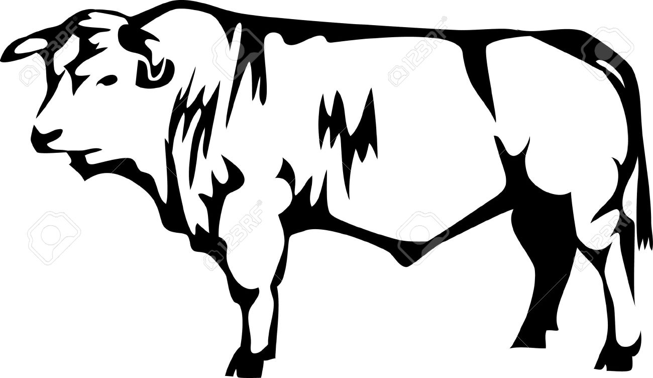 Beef Breed Of Cattle Royalty Free Cliparts, Vectors, And Stock.