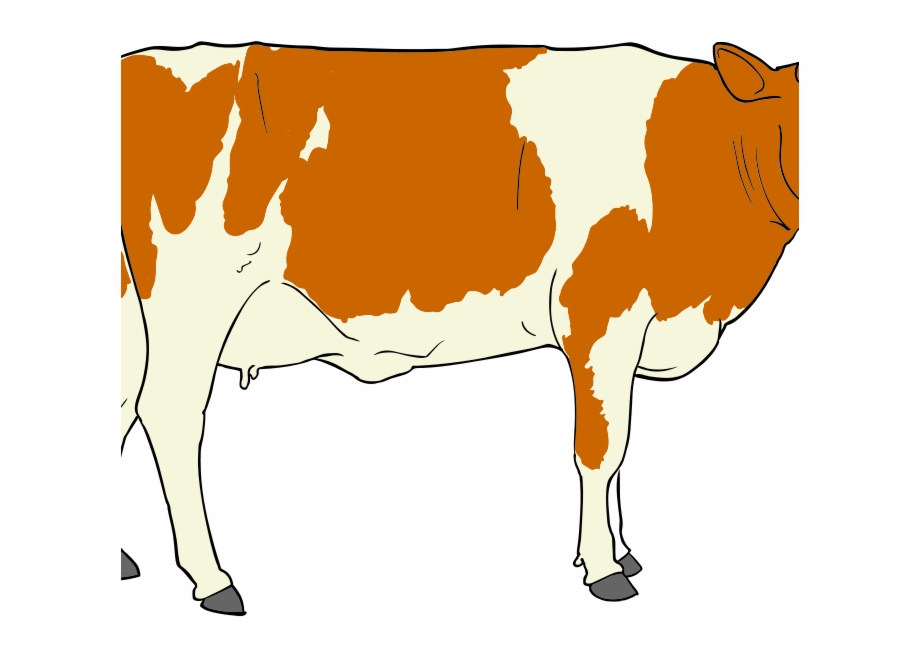 Png Transparent Library Beef Cow Clipart.