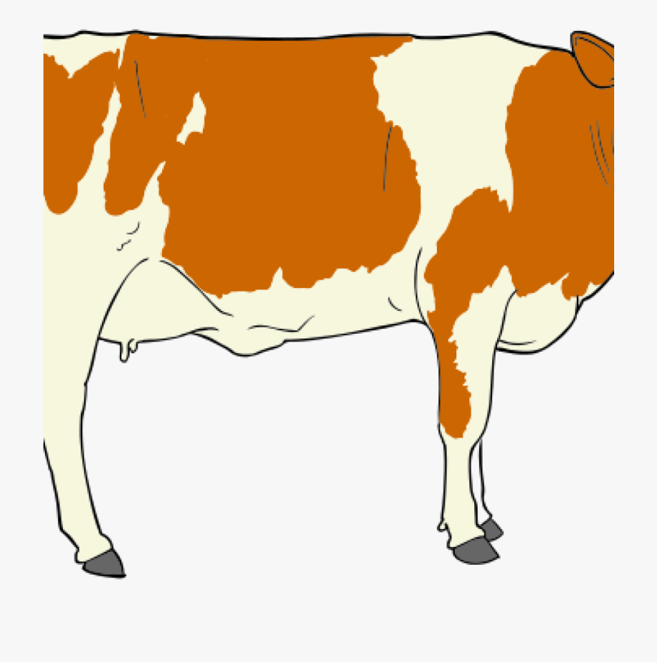 Cows Clipart Mouth.