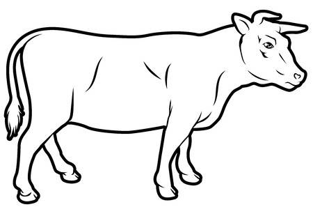Beef Steer Clip Art 20 Free Cliparts Download Images On