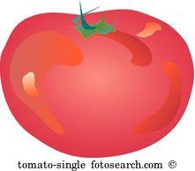 Beefsteak tomato Illustrations and Stock Art. 4 beefsteak tomato.