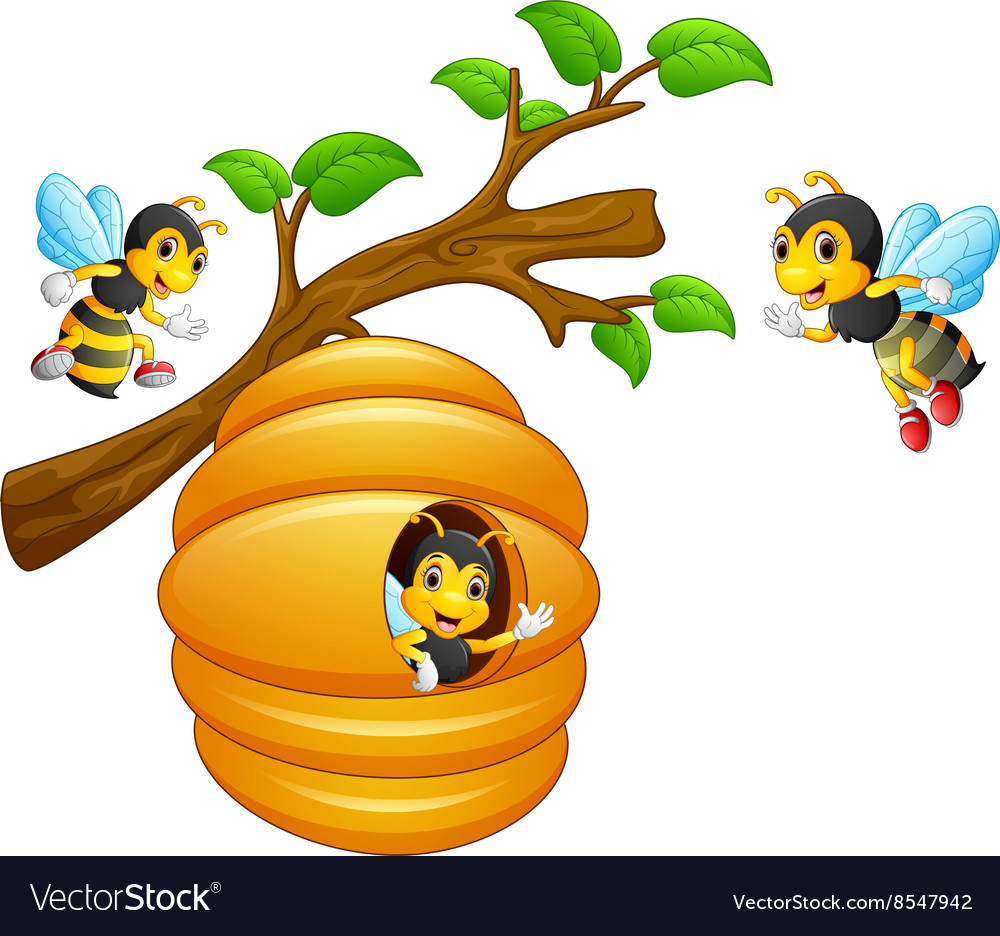 The bees fly out of a beehive hanging from a tree.