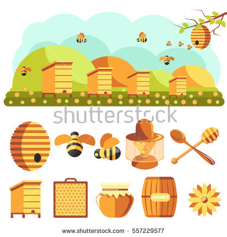 Beekeeping Stock Photos, Royalty.