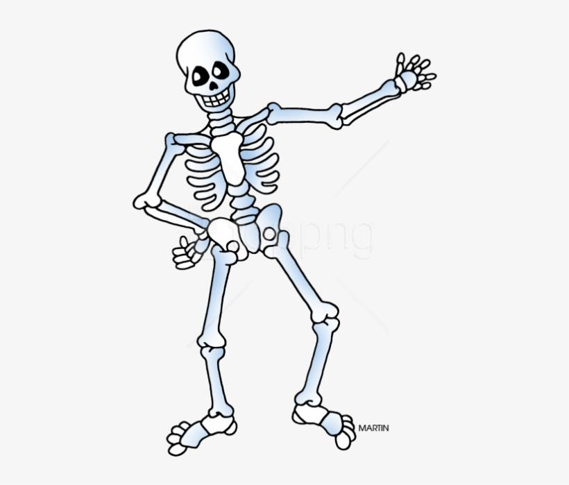 Free Png Download Free Skeleton Public Domain Halloween.