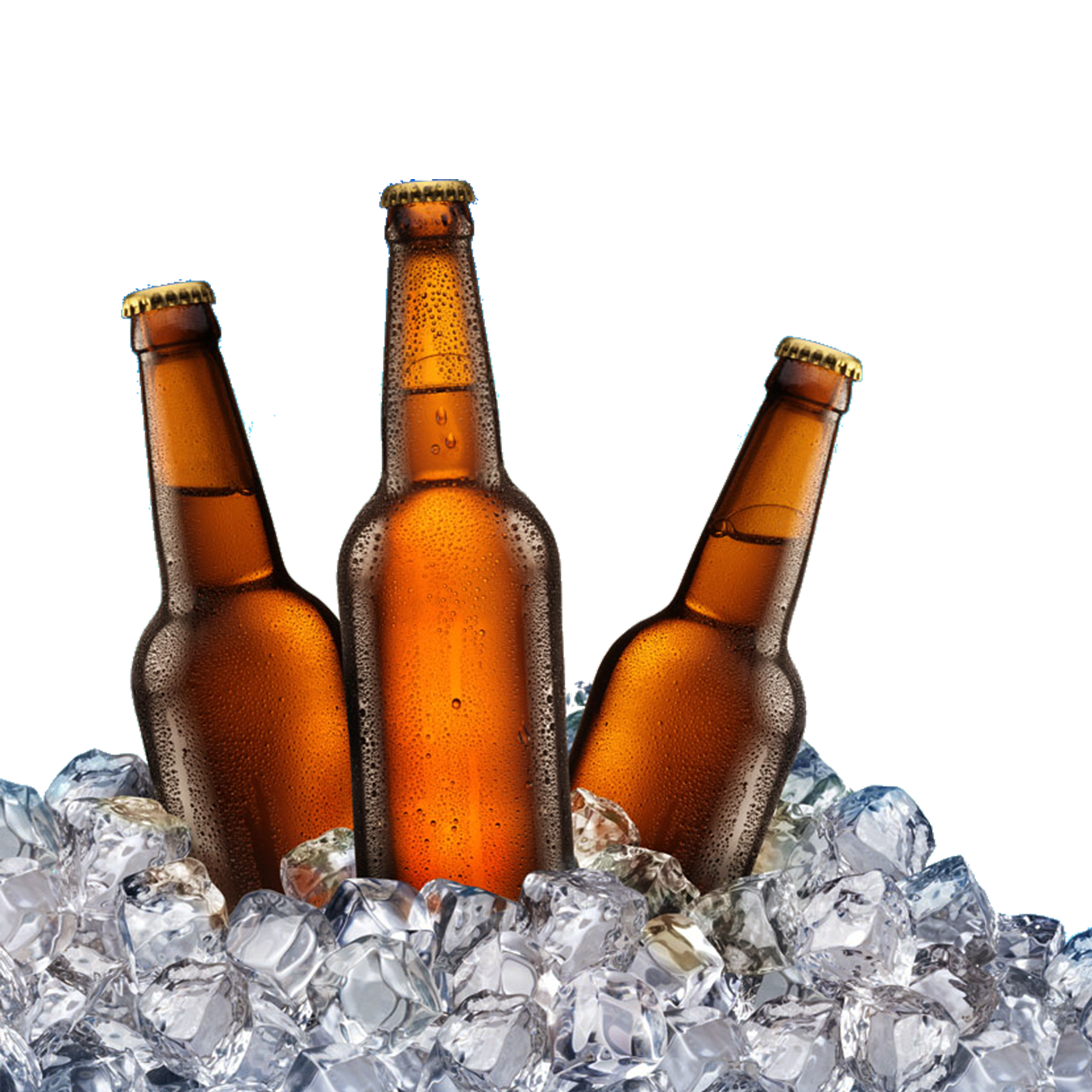 Beer Bottles on Ice PNG.
