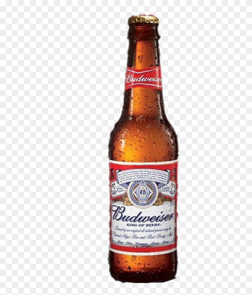 Budweiser Clipart Budweiser Beer.