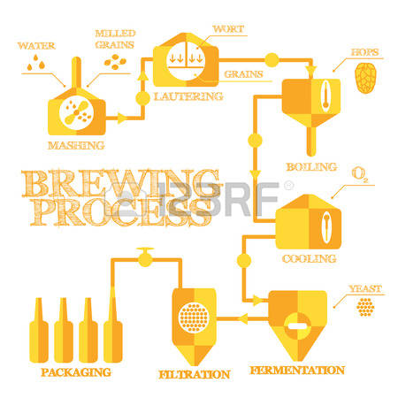 9,086 Brewing Beer Stock Illustrations, Cliparts And Royalty Free.