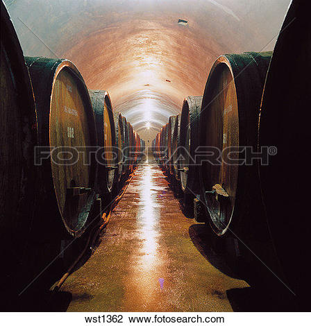 Stock Photo of beer cellar wst1362.