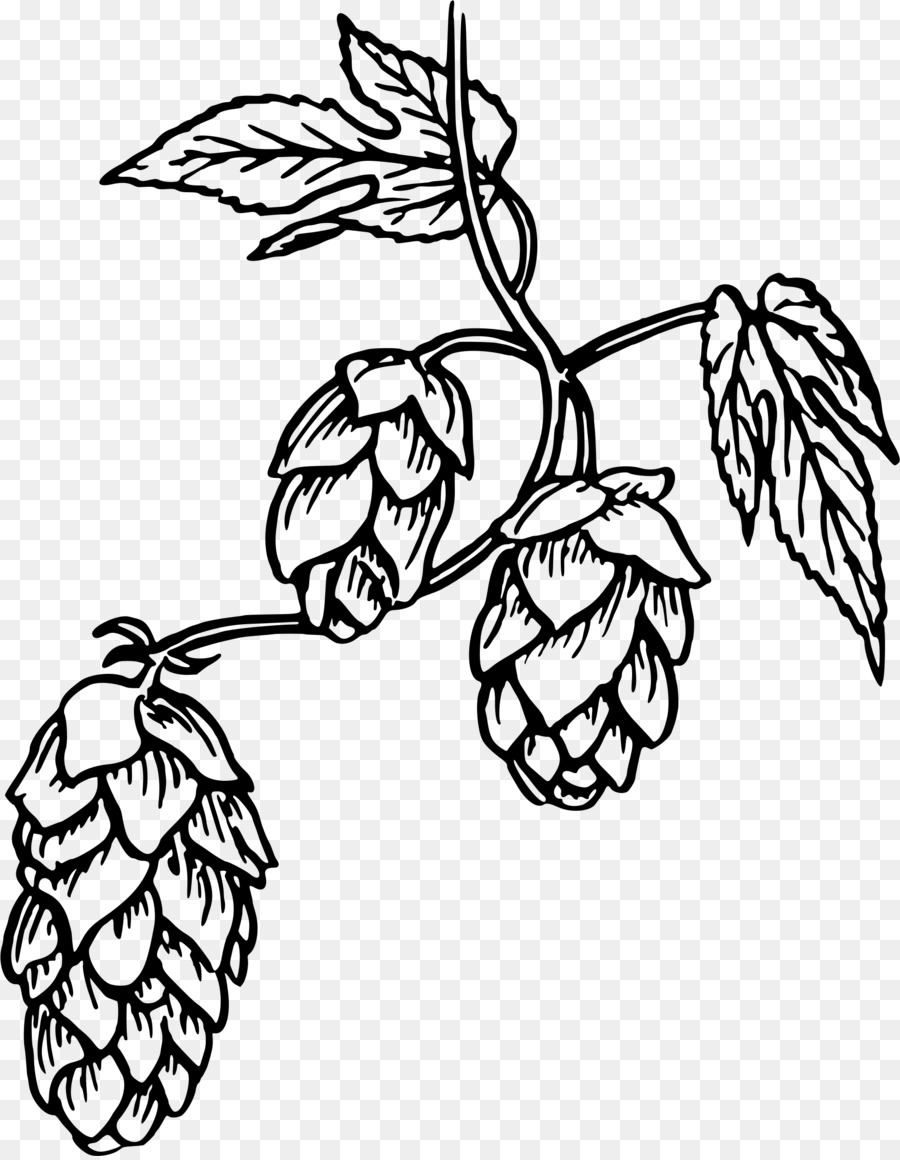 Beer Hops Clip art Portable Network Graphics Drawing.