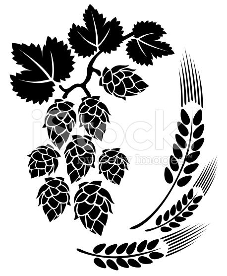 Stylized hop and ears on a white background..