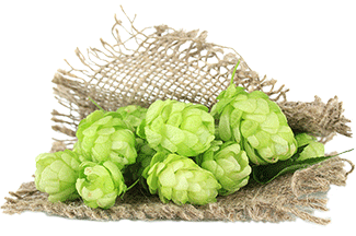 How Do You Evaluate a New Hop? SMaSH It!.