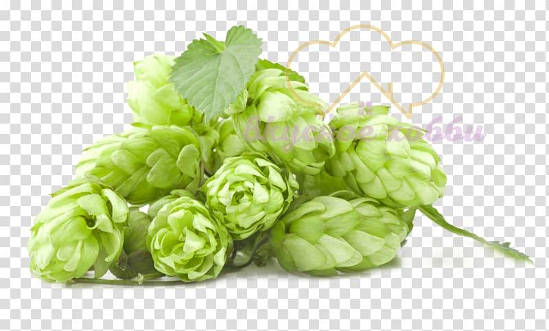 India pale ale Beer Amarillo hops, beer transparent background PNG.