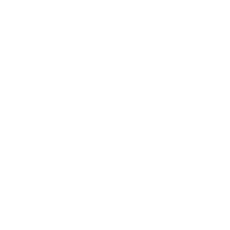 White beer icon.