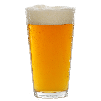 Download Beer Free PNG photo images and clipart.