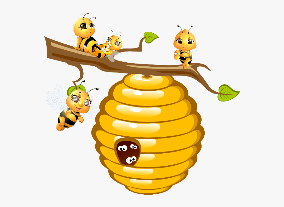 bees #hive #honey.