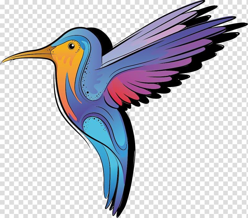 Hummingbird Color Cartoon, Bee Bird transparent background.