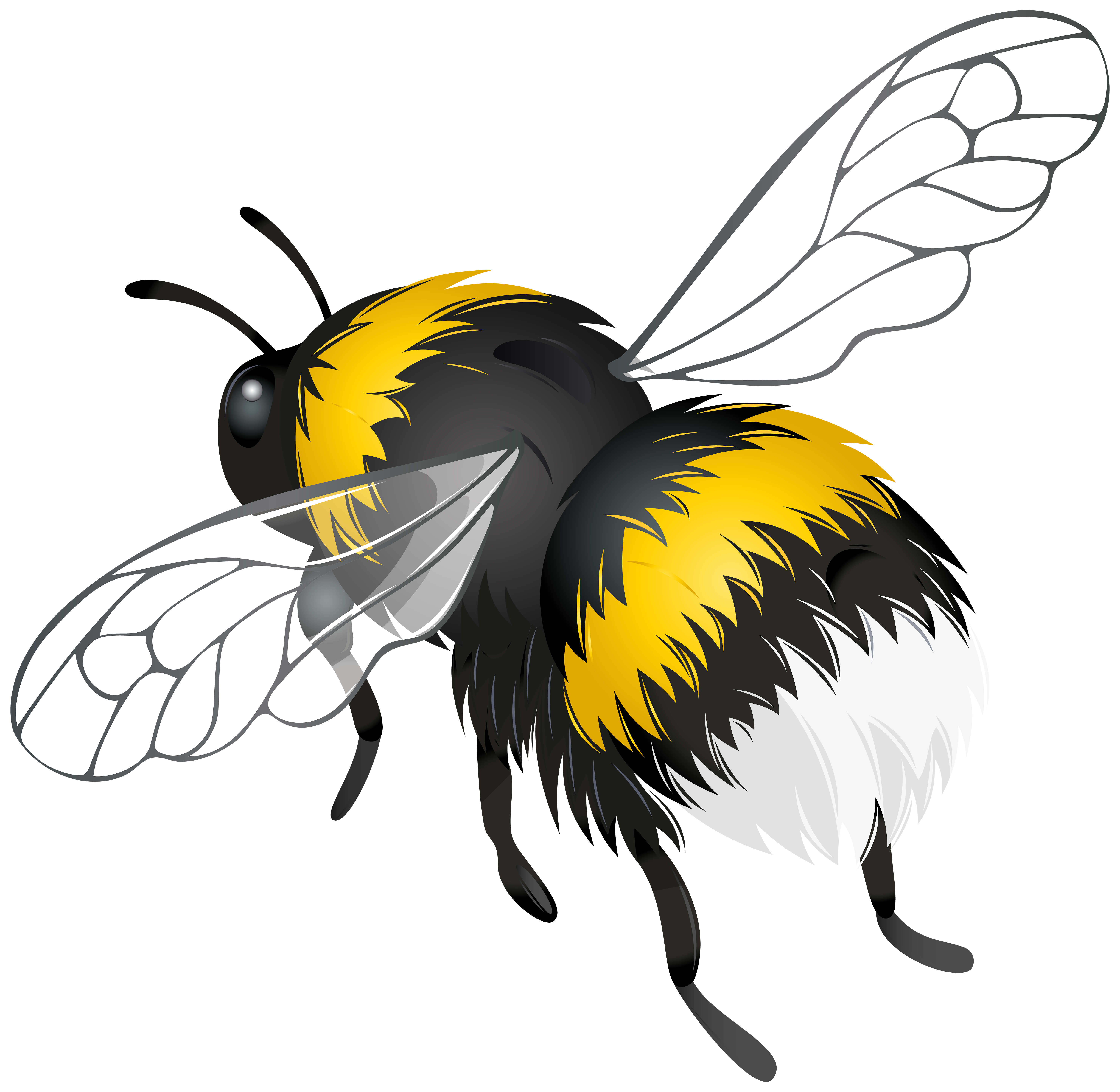 Clipart birds bee, Clipart birds bee Transparent FREE for.