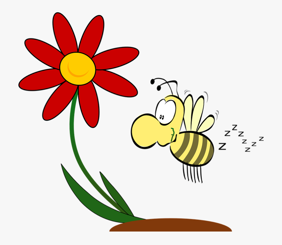Flowers Attract Bees Clipart , Transparent Cartoon, Free.