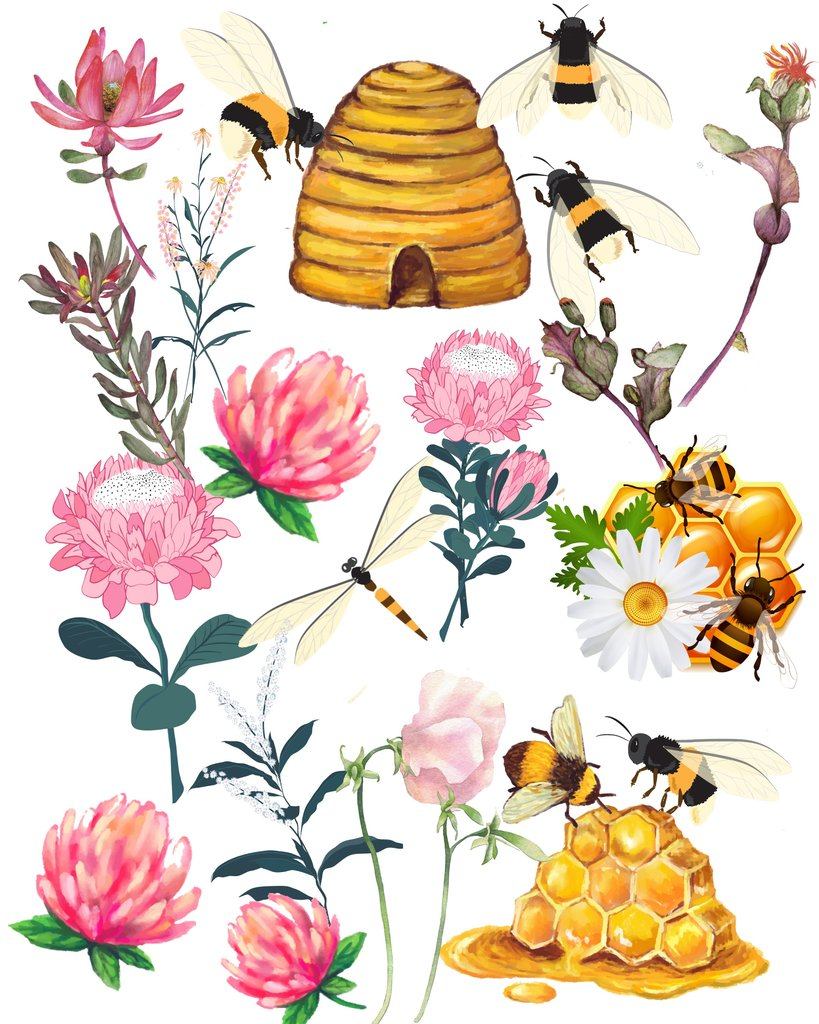 36 Assorted Honey Bees and Flowers Graphic Images Clip Art Transparent PNG  Files Instant Download.