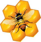 Beeswax Clip Art.