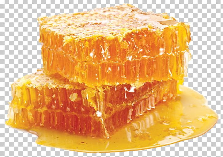 Beeswax Honeycomb Honey Bee Beehive PNG, Clipart, American Foulbrood.