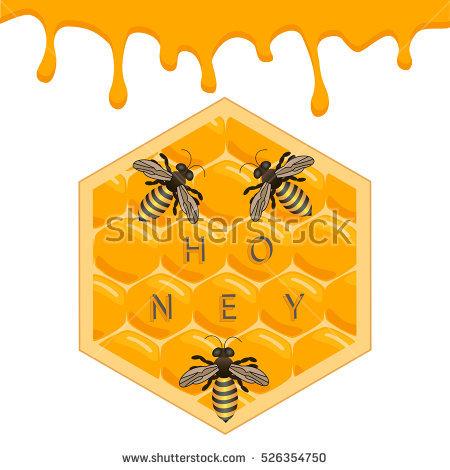 Wax Plant Shutterstock 库存照片、免版税图片和矢量图.