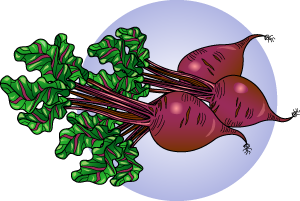 Beets Clipart.