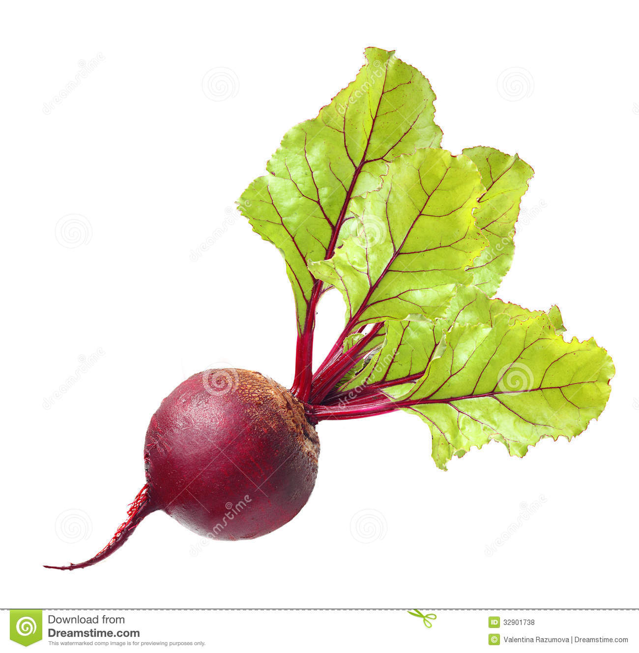Beetroot With Leaves Royalty Free Stock Photos.