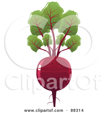 Clipart of Engraved Beets and Greens.