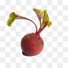 Beet Hd Picture, In Kind, Leaf, Plant PN #35771.