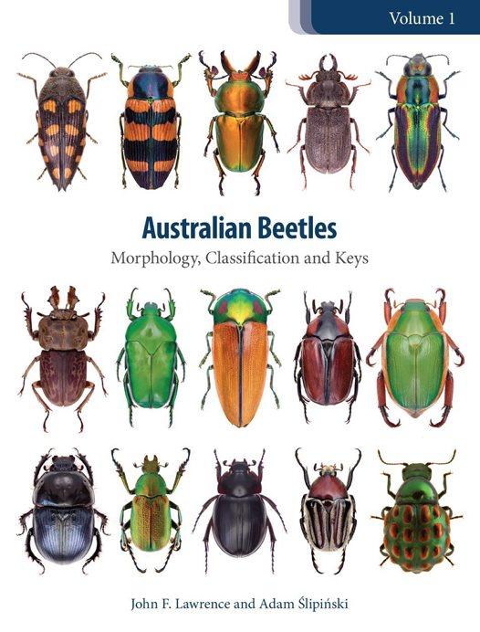 Beetles in print.