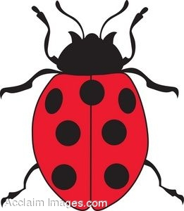 Clip Art Picture of a Ladybug.