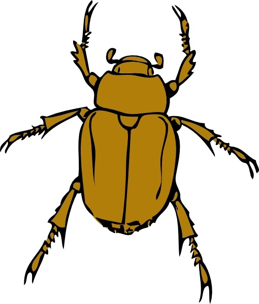 Beetle Bug clip art Free vector in Open office drawing svg ( .svg.