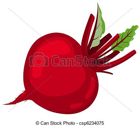 Beet Stock Illustration Images. 2,993 Beet illustrations available.