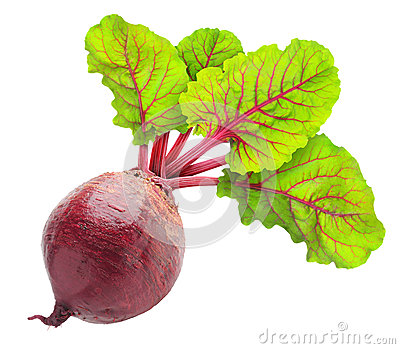 Beetroot Leaves Isolated White Stock Photos, Images, & Pictures.