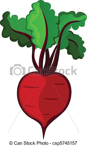 Beetroot clipart #19