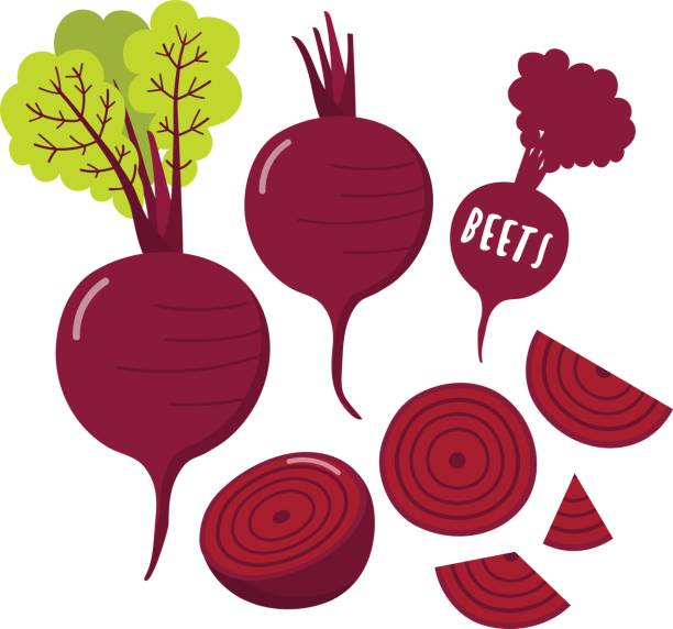 Best Beetroot Illustrations, Royalty.