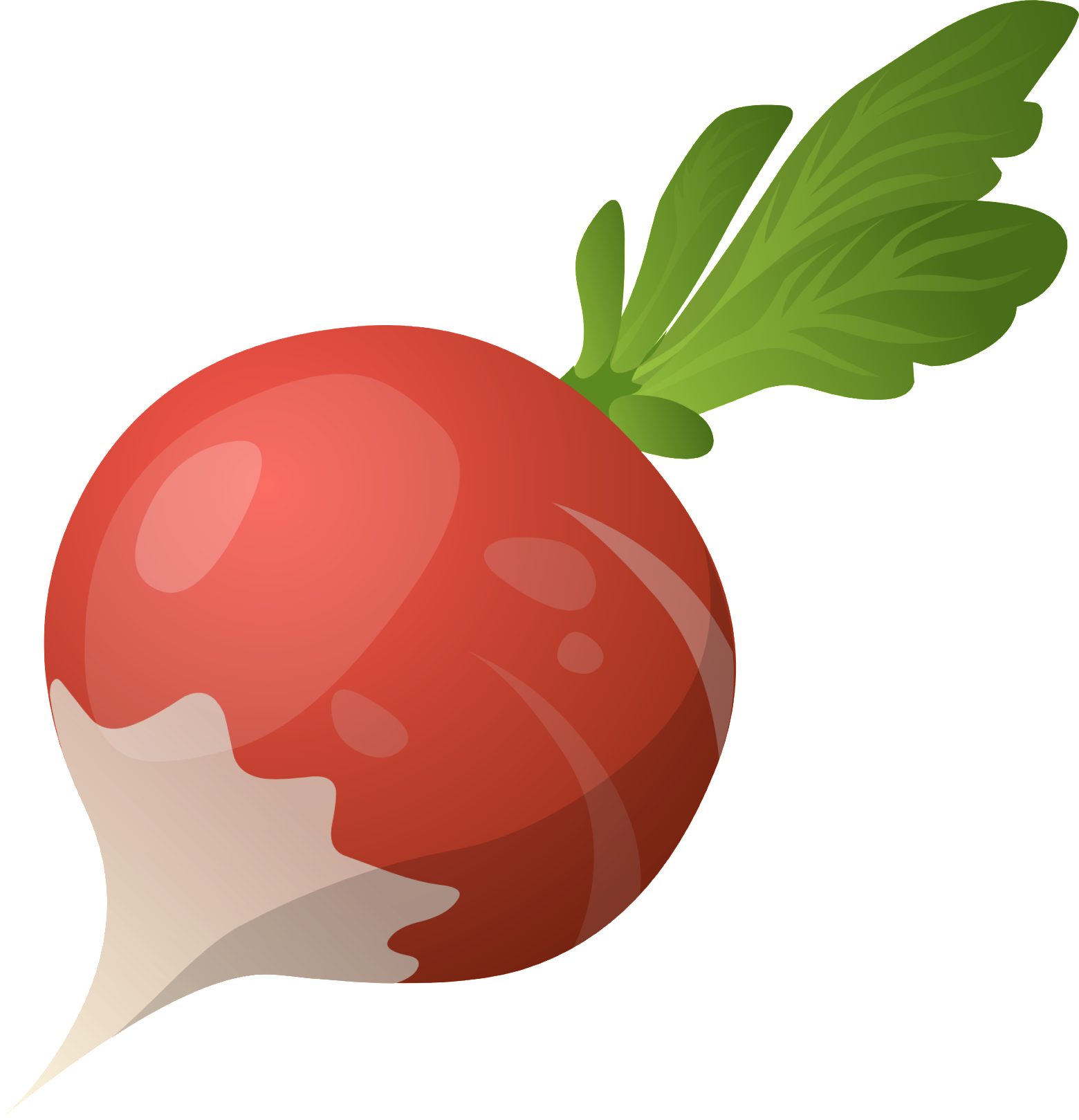 Pin by pngsector on Beetroot Clip art & Beetroot PNG image in 2019.