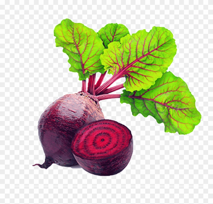 Red Beet Root Physical Material.
