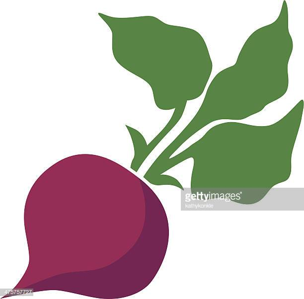 60 Top Beets Stock Illustrations, Clip art, Cartoons, & Icons.