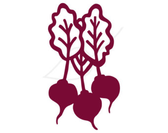 Beets digital stamp clip art.